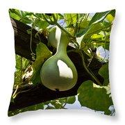 Gourd Handing On Throw Pillow