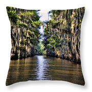 Government Ditch Throw Pillow