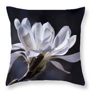 Grace - No. 2 Throw Pillow