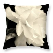 Grace Of Creation Throw Pillow