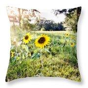 Grace Plantation Throw Pillow