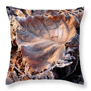 Graced By Frost Throw Pillow