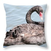 Graceful Black Swan Throw Pillow