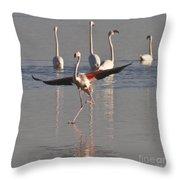 Graceful Flamingo Dance Throw Pillow