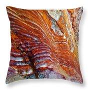 Graceful Grooves Rock In Petra-jordan Throw Pillow