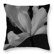 Graceful In Monochrome  Throw Pillow