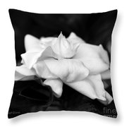 Graceful Soft And Sweet Throw Pillow