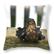 Grackle In The Bird Bath 1 Throw Pillow