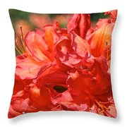 Grade A Azalea Throw Pillow