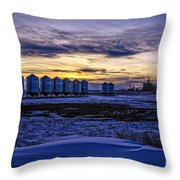 Grain Barns Throw Pillow