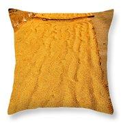 Grain Drying Throw Pillow