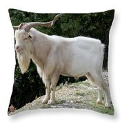 Gramps Throw Pillow
