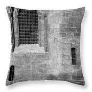 Granada Cathedral Monochrome Throw Pillow