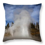 Grand And Vent Throw Pillow