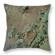 Grand Bahama Reef V Throw Pillow
