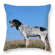 Grand Bleu De Gascogne Throw Pillow
