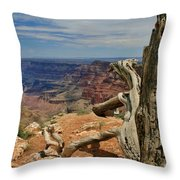 Grand Canyon And Dead Tree 1 Throw Pillow