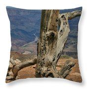 Grand Canyon And Dead Tree 2  Throw Pillow