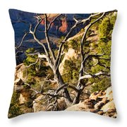 Grand Canyon Branches Throw Pillow