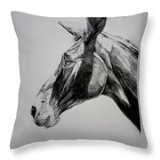Grand Canyon Mule Throw Pillow
