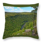 Grand Canyon Pa 2770 Throw Pillow