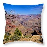 Grand Canyon South Rim Trail Throw Pillow