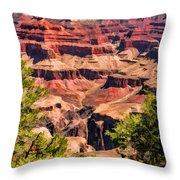 Grand Canyon Valley Throw Pillow