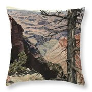 Grand Canyon View Weathered Tree Right Side  Throw Pillow