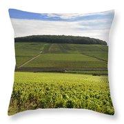 Grand Cru And Premier Cru Vineyards Of Aloxe Corton. Cote De Beaune. Burgundy. France. Europe. Throw Pillow by Bernard Jaubert