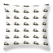 Grand Kitty Cuteness Bw 40 Throw Pillow by Andee Design