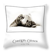 Grand Kitty Cuteness Miss Tilly Poster Throw Pillow by Andee Design