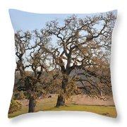 Grand Oaks Throw Pillow
