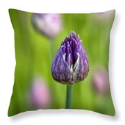 Grand Opening Throw Pillow