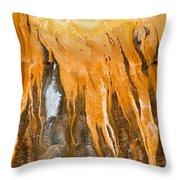 Grand Prismatic Detail Throw Pillow