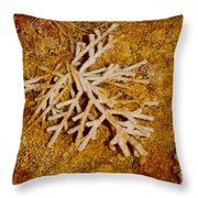 Grand Prismatic Springs 2.0058  Throw Pillow