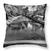 Grand Rapids Throw Pillow by Dan Sproul