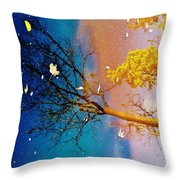 Grand Reflections # 1 Throw Pillow