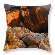 Grand Soft Light Throw Pillow