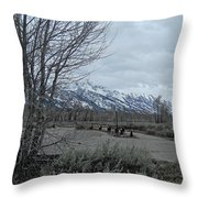 Grand Tetons Landscape Throw Pillow