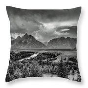 Grand View Throw Pillow