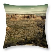 Grand View Throw Pillow