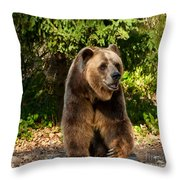 Grandpa Bear Throw Pillow