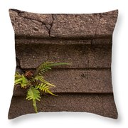 Granite Fern   #5708 Throw Pillow