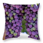 Grape Bunches Portrait Throw Pillow