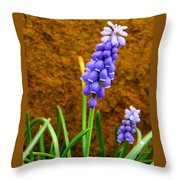 Grape Hyacinth And Sandstone  Throw Pillow