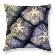 Grape Hyacinth Detail Throw Pillow