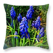 Grape Hyacinths 2014 Throw Pillow