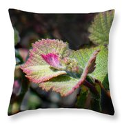 Grape Leaves In Spring Throw Pillow