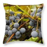 Grape Work Throw Pillow