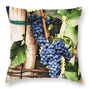 Grapes 1 Throw Pillow